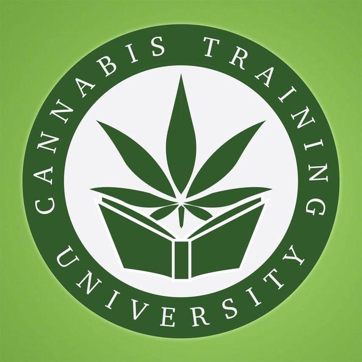Cannabis affiliate program 7