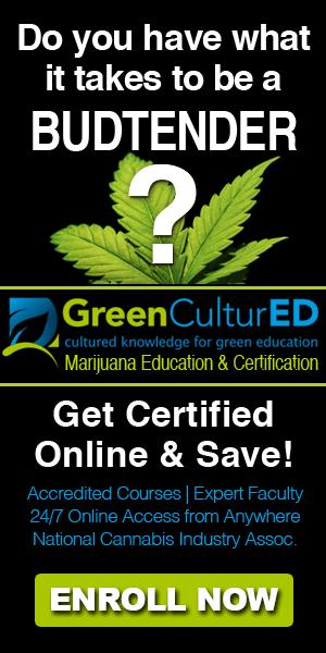 Cannabis affiliate program 9